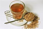 Sassafras tea and bark (Sassafras albidum)