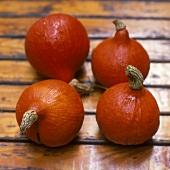 Four pumpkins (variety: Oranger Knirps)