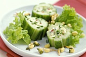 Cucumber slices with feta and quark stuffing and sprouts