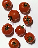 Individual tomatoes with drops of water
