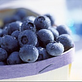 Fresh blueberries in a punnet