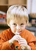 Small boy sucking lollipop