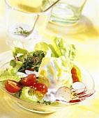 Gemischter Salat mit Saure-Sahne-Dressing
