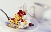Muesli with yoghurt, redcurrants & grated coconut on spoon