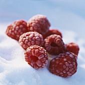 Frozen raspberries on crystal sugar