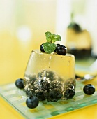 Champagne jelly with blueberries