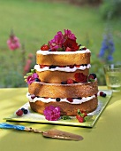 Tiered berry gateau garnished with flowers