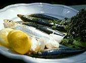 Sarde alla palermitana (Sardines with garlic & lemon)