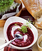 Cold beetroot soup with cress