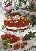 Redcurrant gateau, garnished with sugared daisies