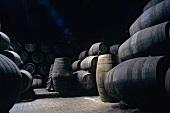 Port maturing in wooden barrels, Vila Nova de Gaia, Portugal