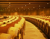 The gigantic wine cellar of the Opus One Winery, Napa Valley
