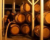 Wine barrels stored in racks, Orlando Winery, Barossa Valley