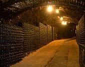 Wine cellar at Seppelt Winery, Victoria, Australia