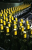 Chardonnay wine bottles on conveyor belt, Rosemount, Australia