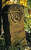 Zind-Humbrecht boundary stone near Windsbühl, Hunawihr, Alsace
