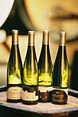 Four white wines from Clement Klur Estate, Katzenthal, Alsace