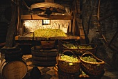 Antike Weinpresse im Weingut Joseph Drouhin, Beaune, Burgund
