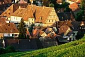 Andlau, bekannter Weinort im Elsass, Frankreich