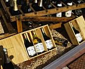 Verschiedene Weinflaschen in einem Schaufenster, Arbois, Jura