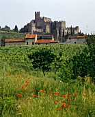 The medieval castle of Soave, Veneto, Italy