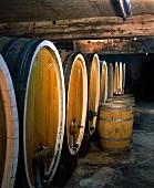 Wine cellar of Koehler-Ruprecht Wine Estate, Kallstadt, Pfalz