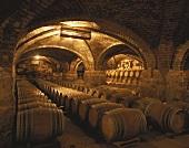 Weinkeller Viña San Pedro, Lontué, Valle de Curico, Chile