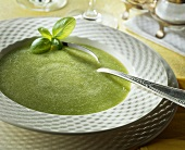 Cold courgette cream soup