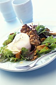 Poached egg, chicken kebab and chanterelle salad