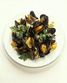 Zuppa di cozze (mussels in wine), Veneto, Italy