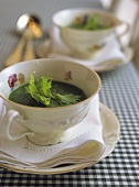 Potato and parsley soup in soup cups