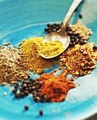 Spices: turmeric, paprika, allspice, coriander, chili