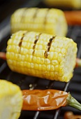 Corncobs on the barbecue (close-up)