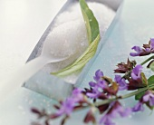 Sage flowers and sugar (for sugared edible flowers)