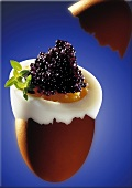 Egg with German caviare (lumpfish roe, caviare substitute)