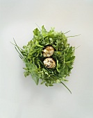 Spring herbs with two quail's eggs