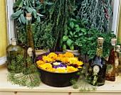 Kräuter, Kräuteröle & Schale mit Blüten vor Küchenfenster