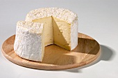Chaource (French soft cheese from Champagne)
