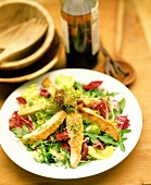 Mixed salad leaves with turkey strips