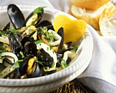 Mussels in white wine and cream stock with fennel and nutmeg
