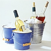 Wine bottles on ice in decorative bucket & wine cooler