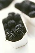 Blackberries in a cardboard punnet