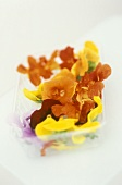 Edible flowers in a plastic box