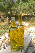 Two bottles of olive oil (outdoor shot)