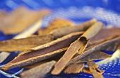 Zimtrinde (vom chinesischen Zimtbaum, Cinnamomum cassia)