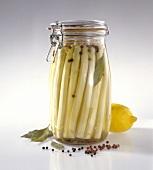 Bottled white asparagus in jar
