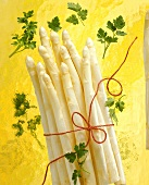 A bundle of white asparagus with red string, parsley