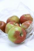 Fresh Braeburn apples in a plastic bag