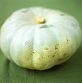 Giant pumpkin, Bleu de Hongrie