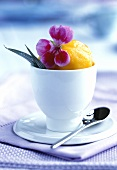 Apricot sorbet in a beaker with flower